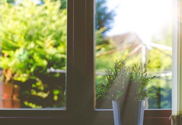 明るく日が差し込むキレイに磨かれた窓ガラス