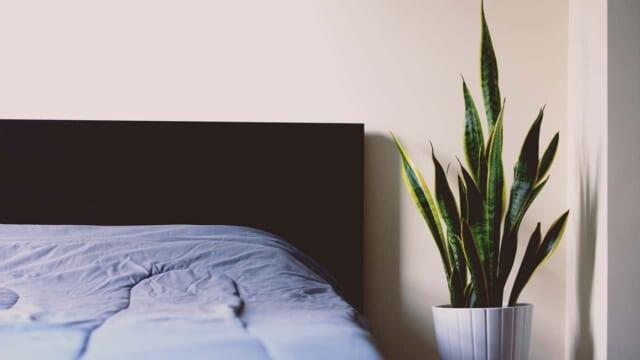 大掃除を機会にアースカラーのコーデに変えた寝室
