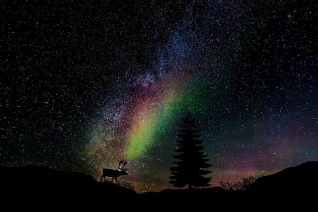 夜空いっぱいに広がる冬の星たち