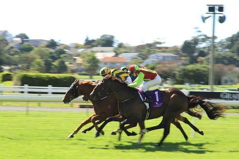 生活費のすべてを注ぎ込んで賭けた馬が3着で散財しギャンブルをやめる決意をする