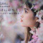 桜の開花をきっかけに意中の男性に誘われてのんびりお花見デート