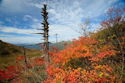 盛秋の那須の紅葉