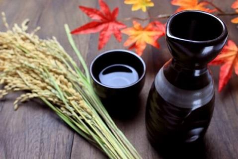 色付いたもみじを眺めながらお米の名産地新潟で作られた日本酒で乾杯