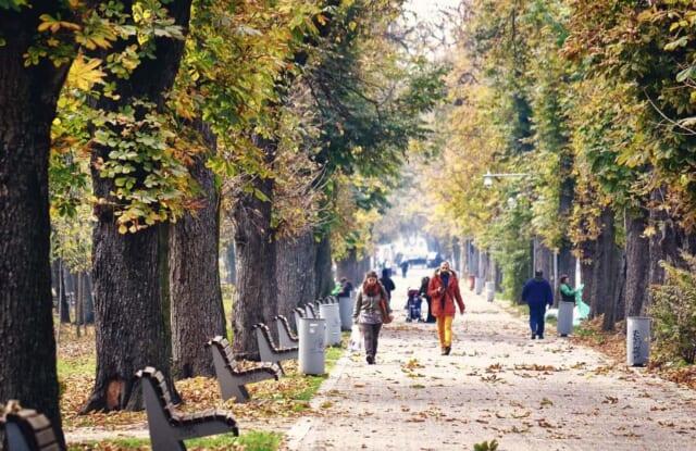 秋色に深まってきた街にある公園の景色
