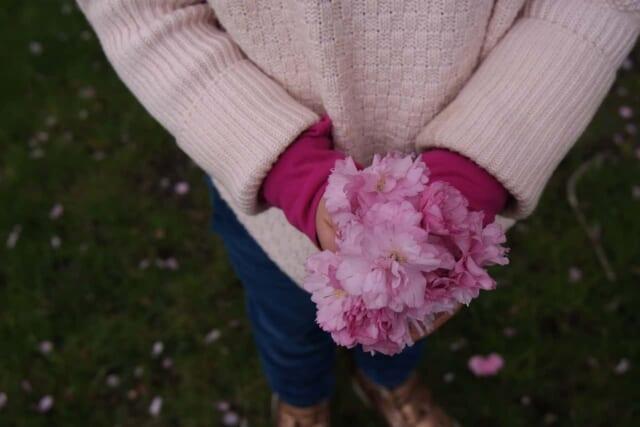 桜の花びらを手に持ち彼氏に見せる女の子