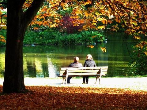 紅葉と落葉の中、池のほとりのベンチに座るカップル
