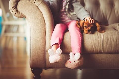 ソファに座るうさぎのスリッパを履いた女の子とそれに寄りそう茶色のキャバリア