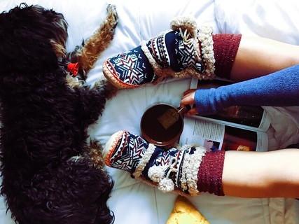 レッグウォーマーとモコモコのルームシューズを履いて温かい紅茶で体を温める女の子と足元で眠る温かそうな犬