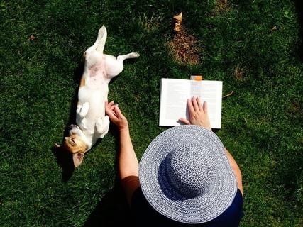 草むらに寝転がり本を読みながら愛犬を可愛がるゆったりとした時間を過ごす女性