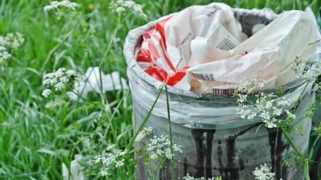 花が咲く草むらの中にポツンと置かれたゴミ箱