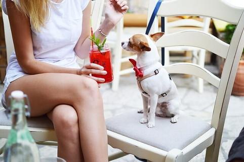 カフェのテーブルにつき隣に座らせた愛犬の名前を呼ぶ女性