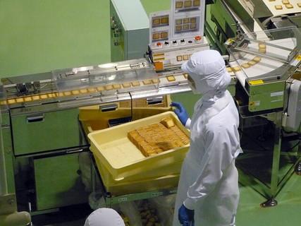 ベルトコンベアで次々とクッキーが運ばれていくお菓子工場