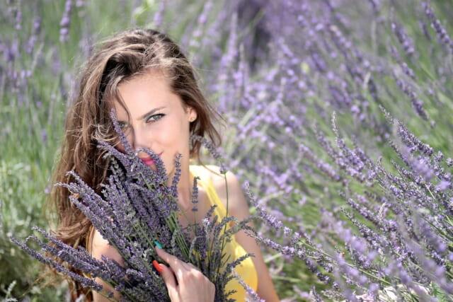 ラベンダー畑に座り花束を持つ顔立ちが整った美しい女性