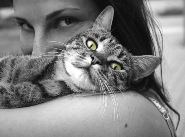 包容力のある女性にぴったりと身を寄せる猫