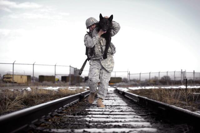 怪我をした大きな犬を背負って線路を歩く思いやりのある男性