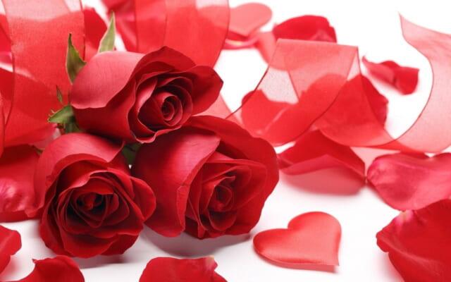 白いテーブルの上に置かれた真っ赤なバラの花束とハート型の花びら