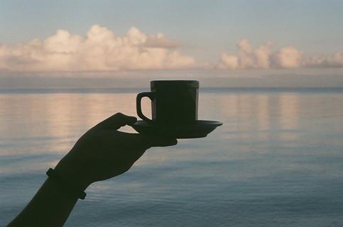 海の潤いをそのままカップに閉じこめたカップ一杯の飲み物